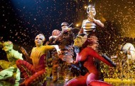 Cirque du Soleil's OVO - A Bug's Life is a Lot of Fun
